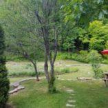 nature espace prana retraite yoga rawdon juin 2017