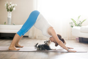 Yoga pour femme enceinte: les avantages pour nous et notre bébé retraite de yoga