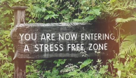 stress free zone retraite yoga orford
