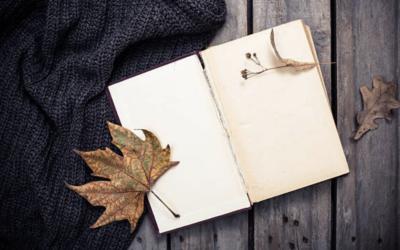 Gratitude : 4 façons simples de la cultiver et de la pratiquer dans son quotidien !