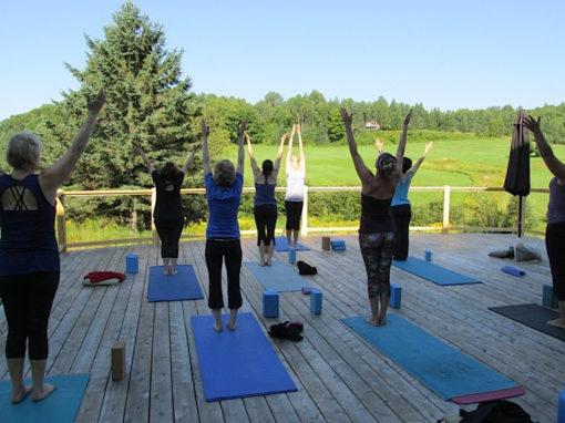 pose_vitalite_juin_2018_yoga