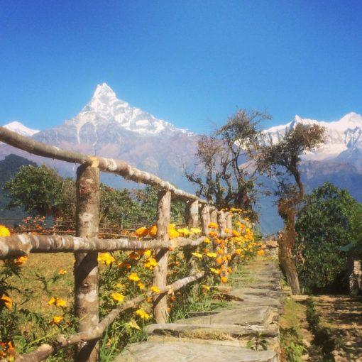 paysage_retraite_yoga_nepal_aout_2018