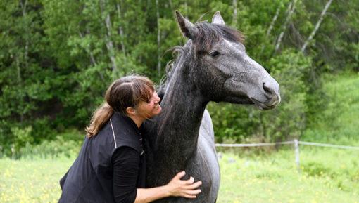 retraite_yoga_chevaux_juillet_2018_