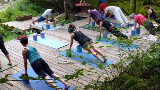 retraite_yoga_chevaux_juillet_2018_yoga