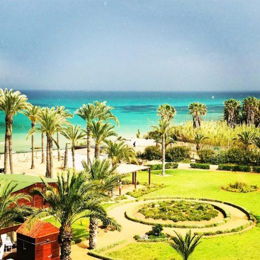 retraite_yoga_tunisie_avril_2019_paysage