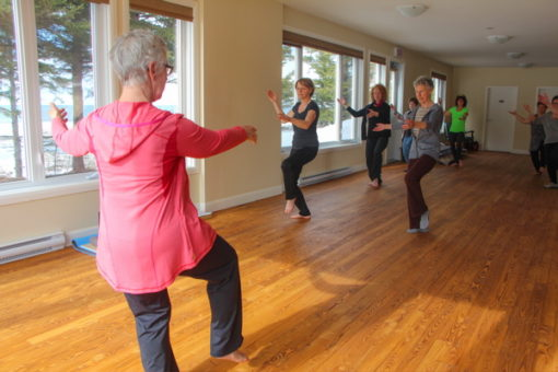 retraite_yoga_Art_du_chi_mars_2019_yoga