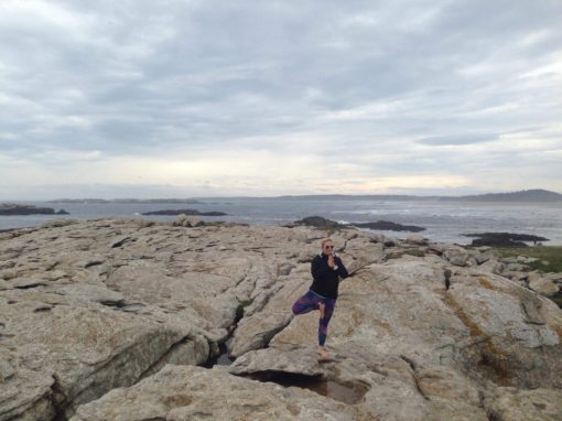 retraite_yoga_maine_mai_2019_paysage