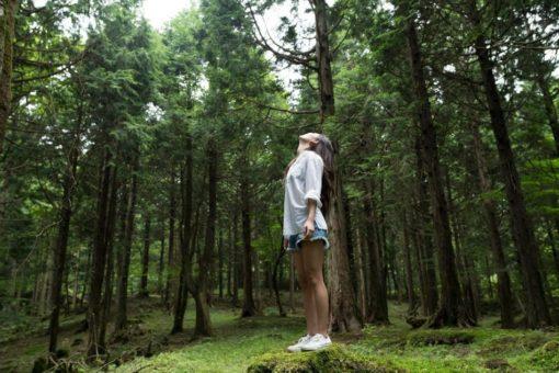 retraite_yoga_juin_2019_lanaudiere_lac_lusignan__foret