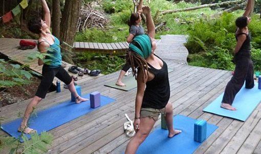 retraite_yoga_lac_brome_juillet_2019_cours_groupe