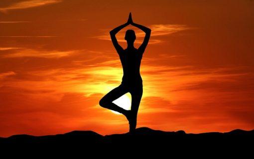 retraite_yoga_mont_gabriel_mai_2019