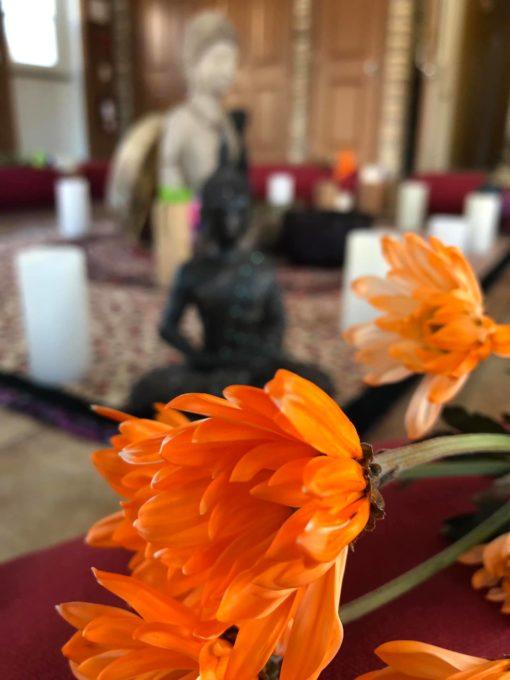 retraite_yoga_milles-illes_laurentides_juillet_2019_fleur