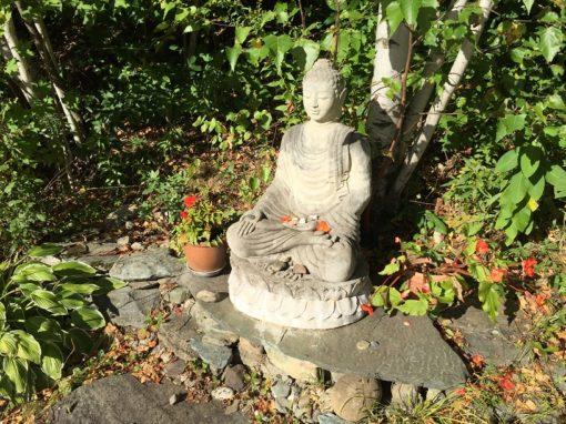 retraite_yoga_saint-robert_septembre_bouddha
