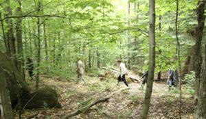 retraite_yoga_lac_brome_novembre_2019_forêt