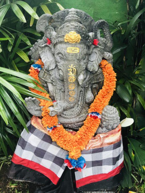 retraite_yoga_bali_elephant