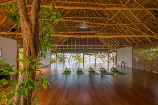 retraite_yoga_mexique_we_treat_studio