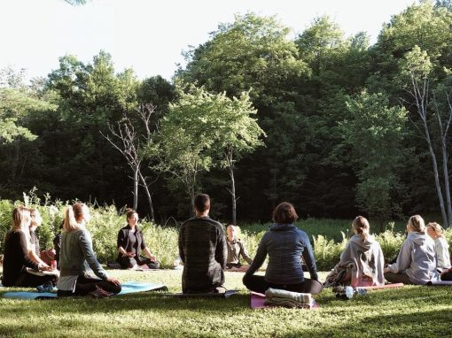 retraite_yoga_sauvage_groupe