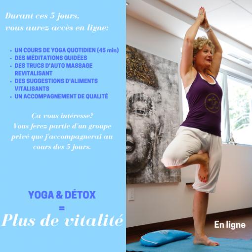 retraite_yoga_en_ligne_continu_2020_details_retraite