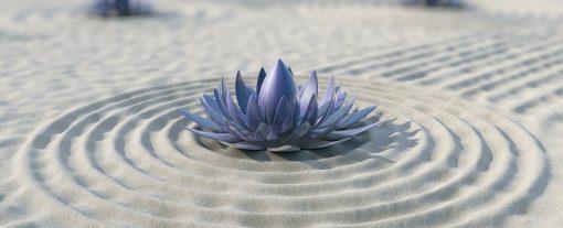 retraite_yoga_sutton_hypnose_fleur