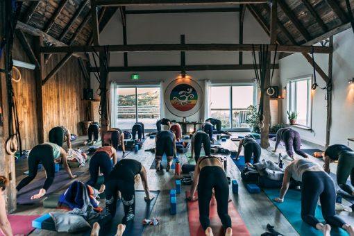 retraite_yoga_ripon_novembre_2020_yoga