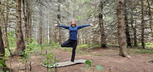 retraite_yoga_bois_principale