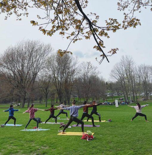 retraite_yoga_parc