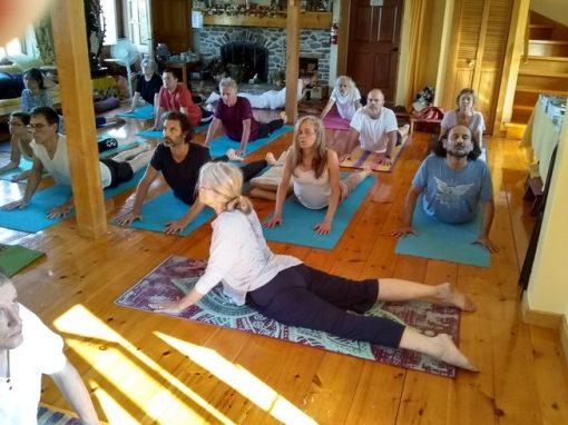 retraite_yoga_ashram_yoga