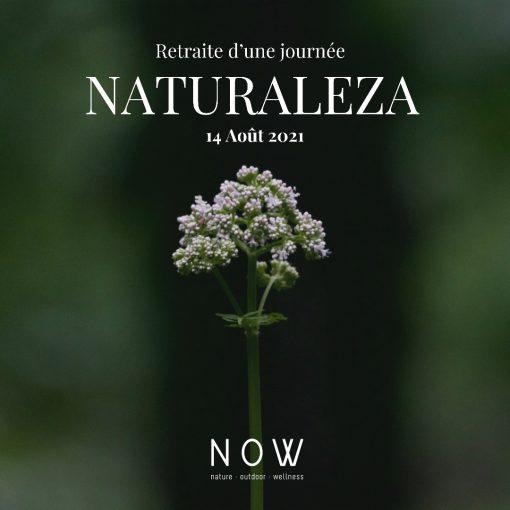 retraite_yoga_naturaleza_principale
